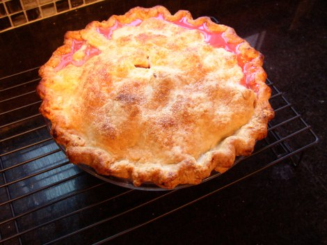 sour cherry pie made by me, circa 2008